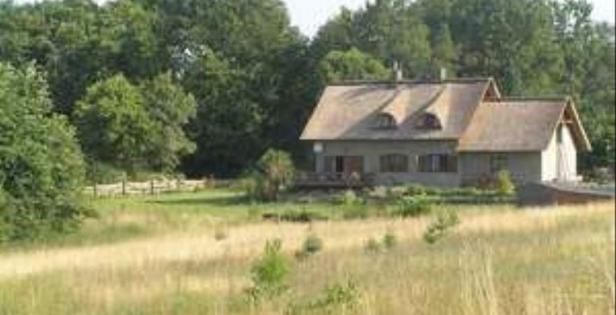 działka na sprzedaż - Duszniki, Grzebienisko